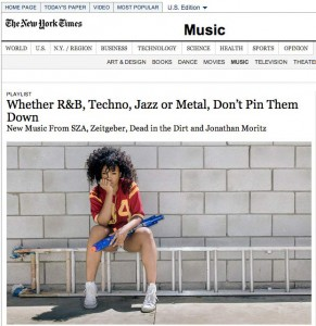 http://jonathanmoritz.com/files/gimgs/th-13_nyTimesCOVER.jpg